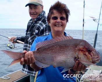 showing-another-great-catch-fishing-charters-whitianga-nz