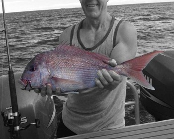 snapper-galore-fishing-charters-whitianga-nz