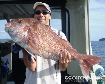 wow-snapper-fishing-charters-whitianga-nz