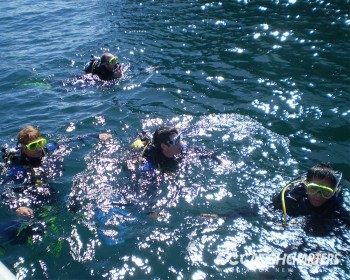 ready-for-descent-dive-charters-whitianga-nz
