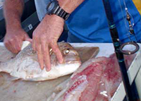 Fish Filleting Service
