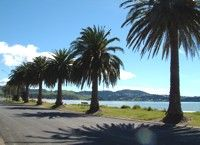 Whitianga, New Zealand
